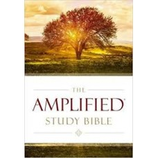 Amplified Study Bible - Hard Cover - Large Print