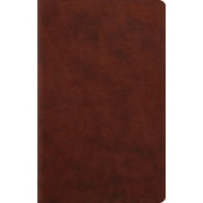 ESV - Large Print Personal Size Bible - Trutone Chestnut