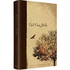 ESV God Guy Bible - Hard Cover Brown